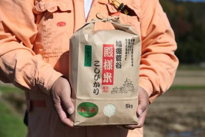 「殿様米こしひかり」を持つ生産者
